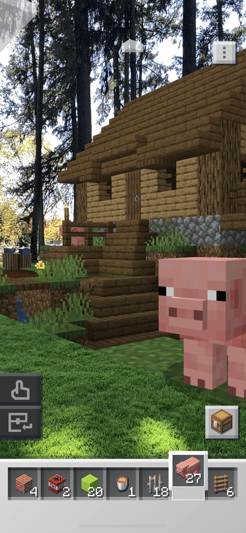 Full size pigs and farms